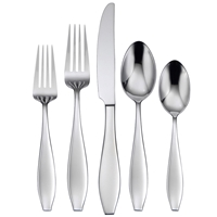 Oneida Comet 5pc Place Setting