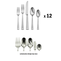 Satin Lewin 65pc Set
