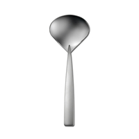 Stiletto Serving Ladle